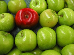 Satu apel merah - Lynn Watson / Shutterstock